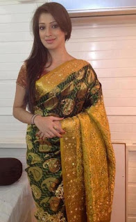 designer raw silk saree