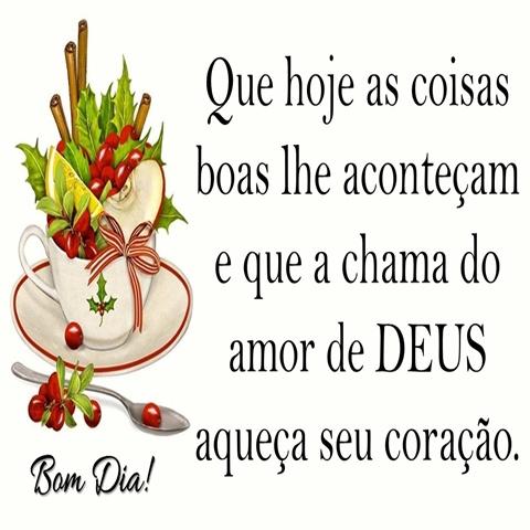 Que hoje as coisas  boas lhe aconteçam  e que a chama do  amor de Deus  aqueça seu coração.  Bom Dia!