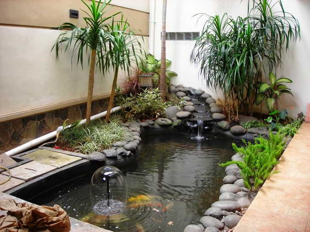 kolam ikan hias minimalis 002