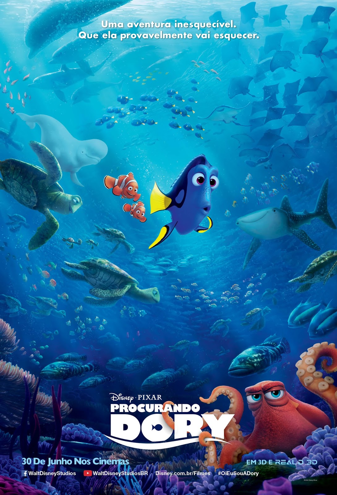 Imagens Procurando Dory Torrent Dublado 1080p 720p BluRay Download