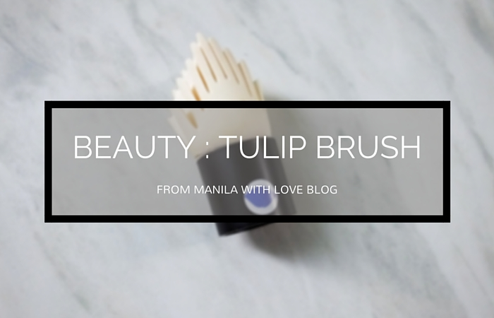 tulip_sponge_tulip_brush_review_how_to_use_tulip_sponge_brush_korean_tools_purpletags