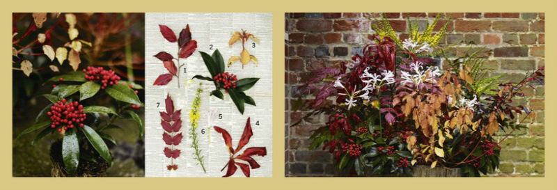Inspiración en maceta. Plantas de otoño presentadas en un barril de madera