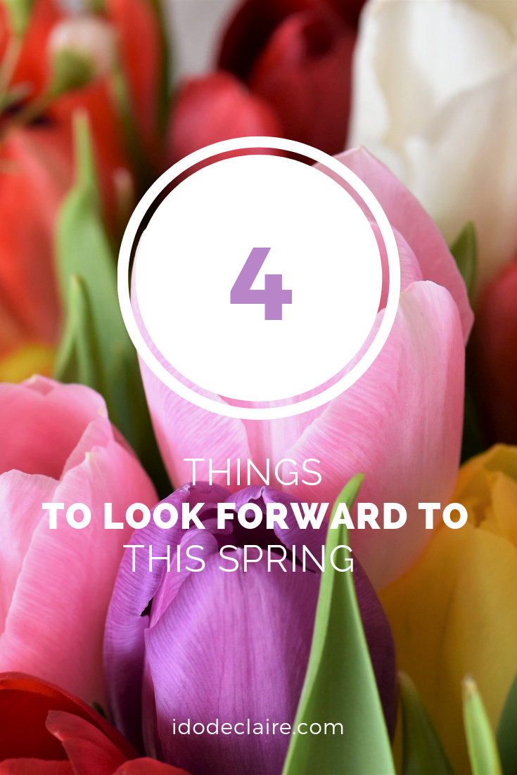 4 Things to Look Forward to This Spring