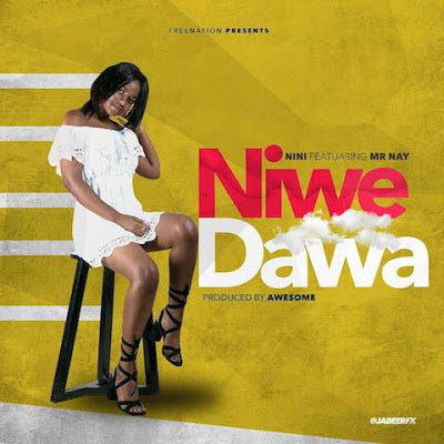 Nini Ft. Nay Wa Mitego (Mr Nay) - Niwe Dawa