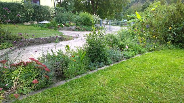 Vorgarten mit Mäuerchenbeet vorne und Aroniabeet hinten (c) by Joachim Wenk