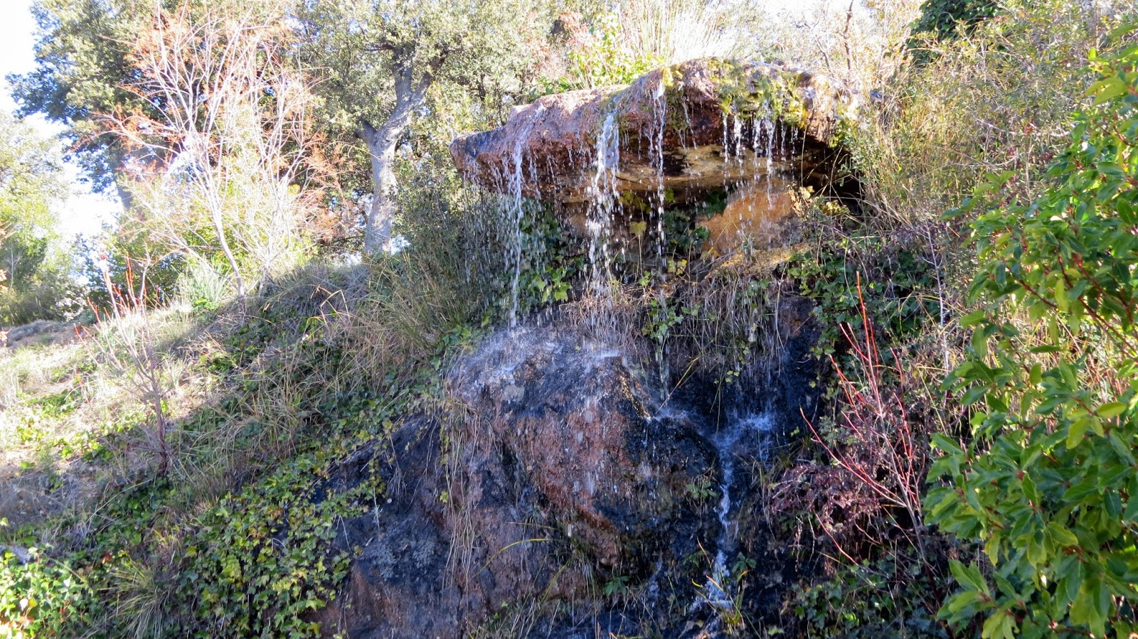 Notas cordobesas el manantial de zagrilla alta priego de for Jardin micologico la trufa