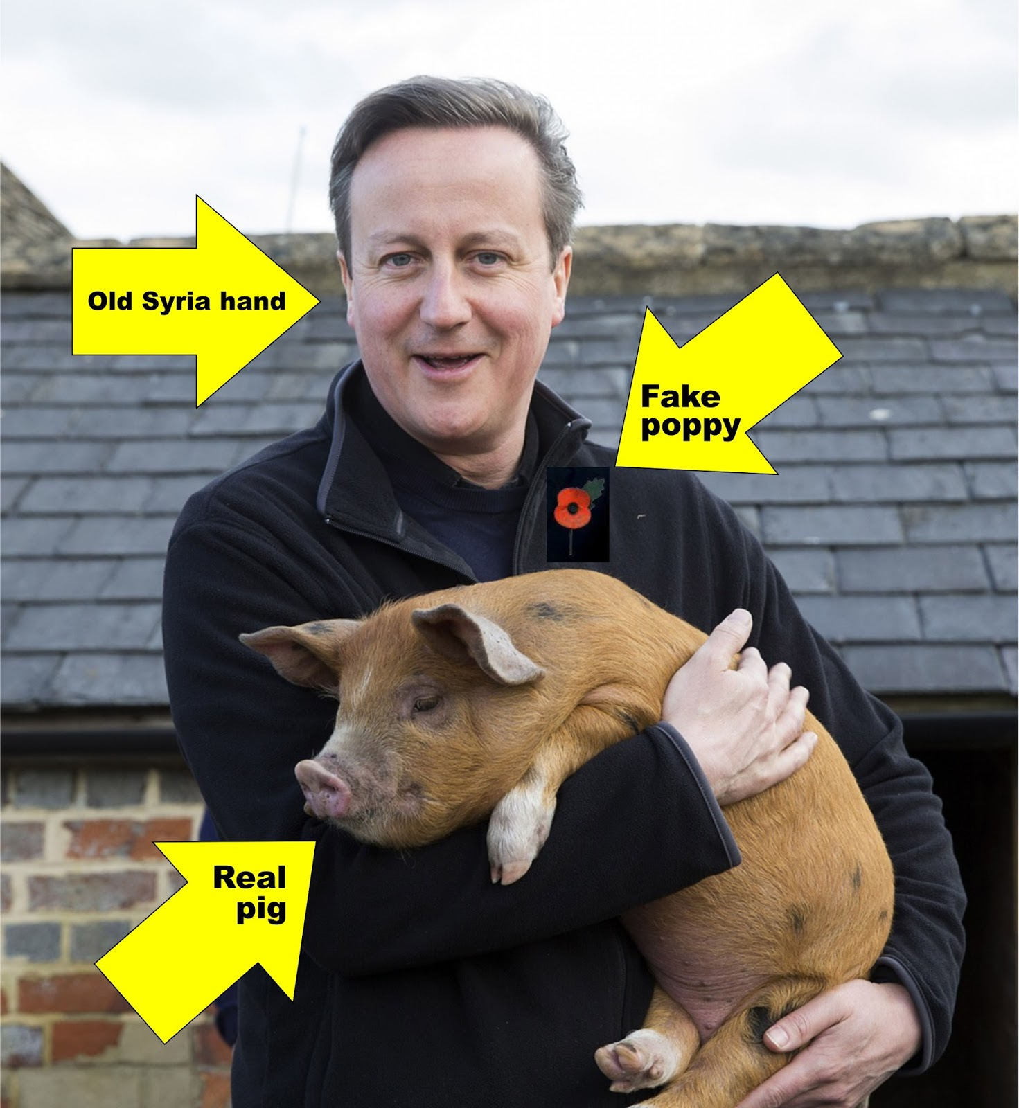 http://www.theguardian.com/politics/2015/nov/02/poppy-photoshopped-david-cameron-facebook-picture