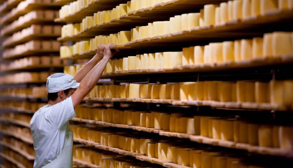 Tête de Moine AOP und Knospe: Ein Käse, zwei Label