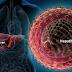 Hepatita C, boala care NU doare, dar UCIDE! Simptome şi mod de transmitere