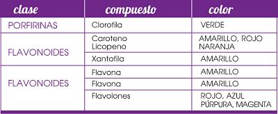 Tabla genética púrpura