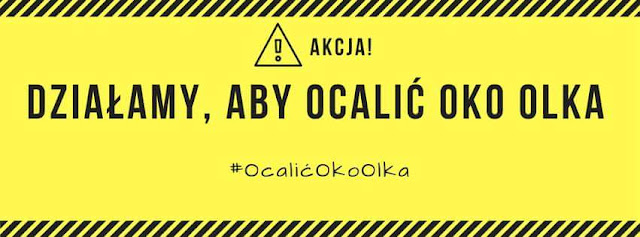 https://www.facebook.com/OcalicOkoOlka/?ref=ts&fref=ts&qsefr=1