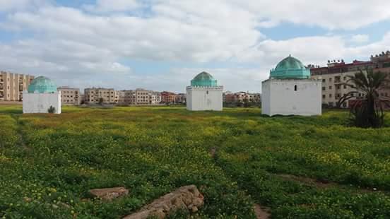 """الأستاذ الكناوي يقترح تحويل """"مقبرة سيدي زاكور"""" إلى ساحة ثقافية سياحية"""