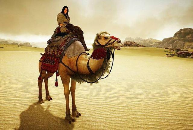bdo-camel-geek-guide.com