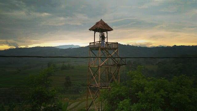 Wisata Batang | Agrowisata Pengkol Van Java Menjangan Subah