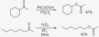 Baeyer Villiger Oxidation
