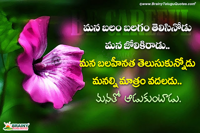 Telugu Be Alert In Life Quotes Messages Best Self Motivational