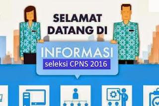 Jadwal Pendaftaran Online Tes CPNS 2016