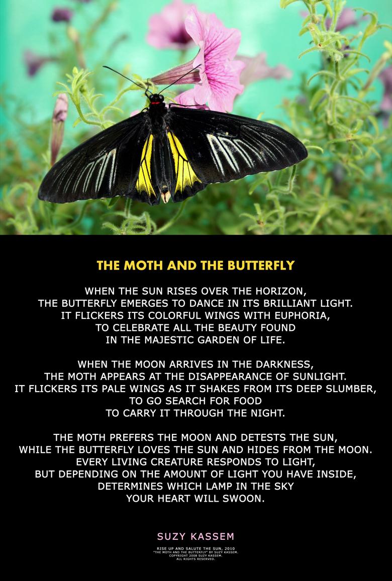 Nature Poem Suzy Kassem