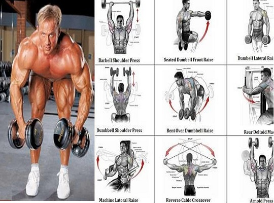 12 Best Dumbbell Exercises For Shoulders B