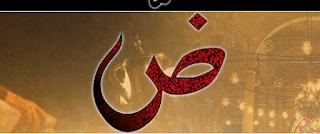 اللغة العربية أم الدارجة العامية؟