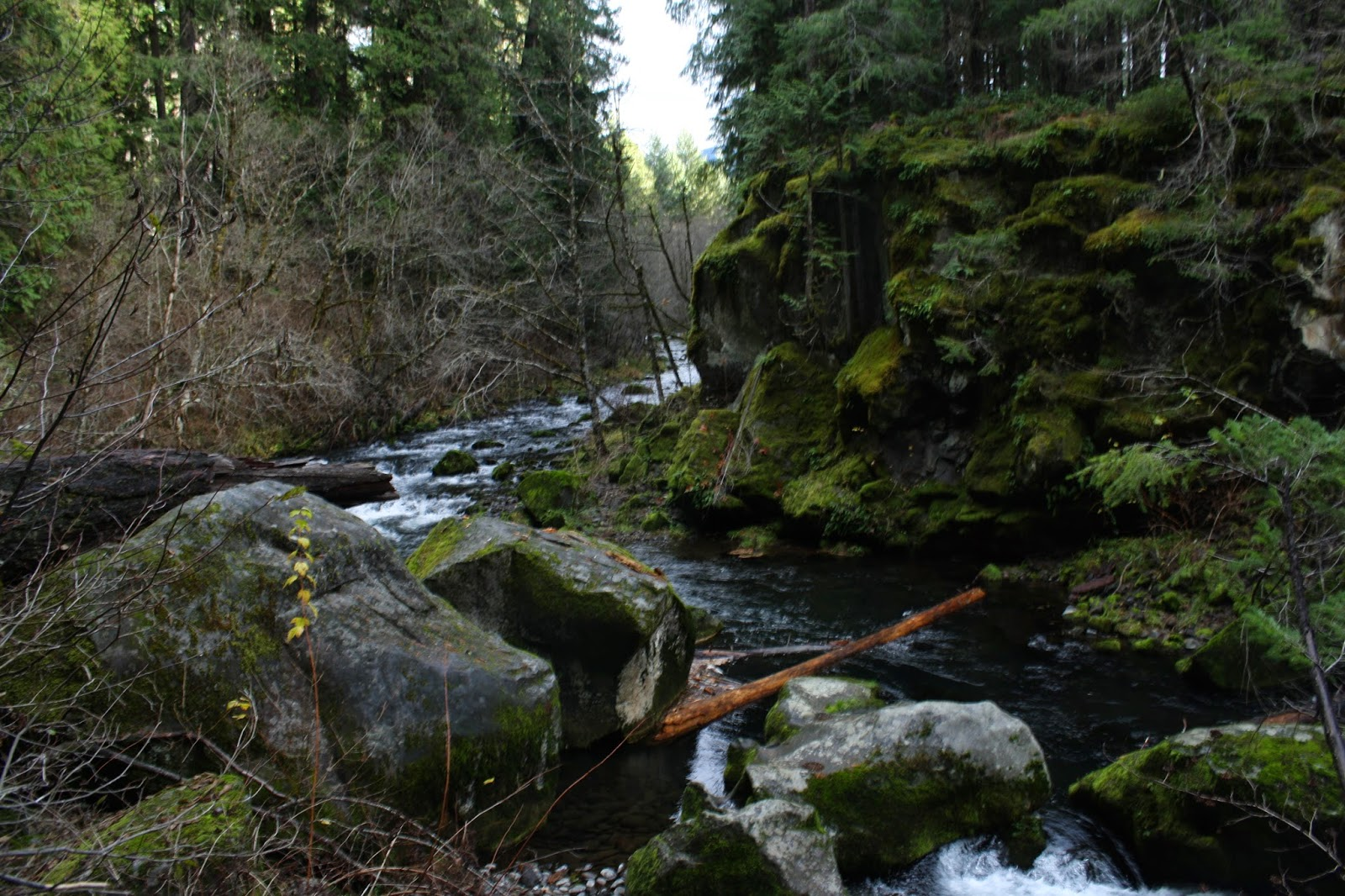 Hike Mondays : Umpqua River and hot springs, Tokatee Falls (North