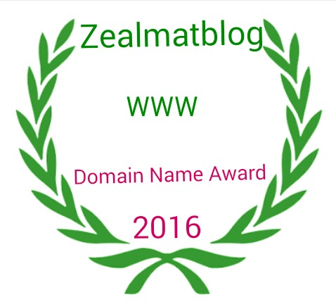 Zealmatblog 2016 Domain Name Award Winner