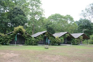 Kulgi Nature Camp, Dandeli