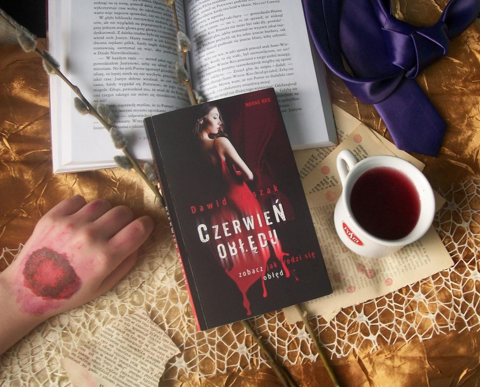 """Ta książka doprowadziła mnie do obłędu.. czyli ''Czerwień Obłędu"""" Dawid Waszak [Recenzja]"""