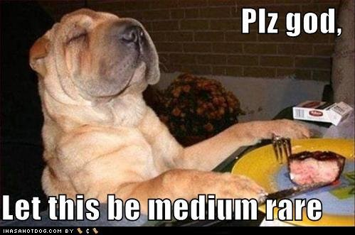 Funny Image Gallery: Funny Pictures Of Dogs With Captions