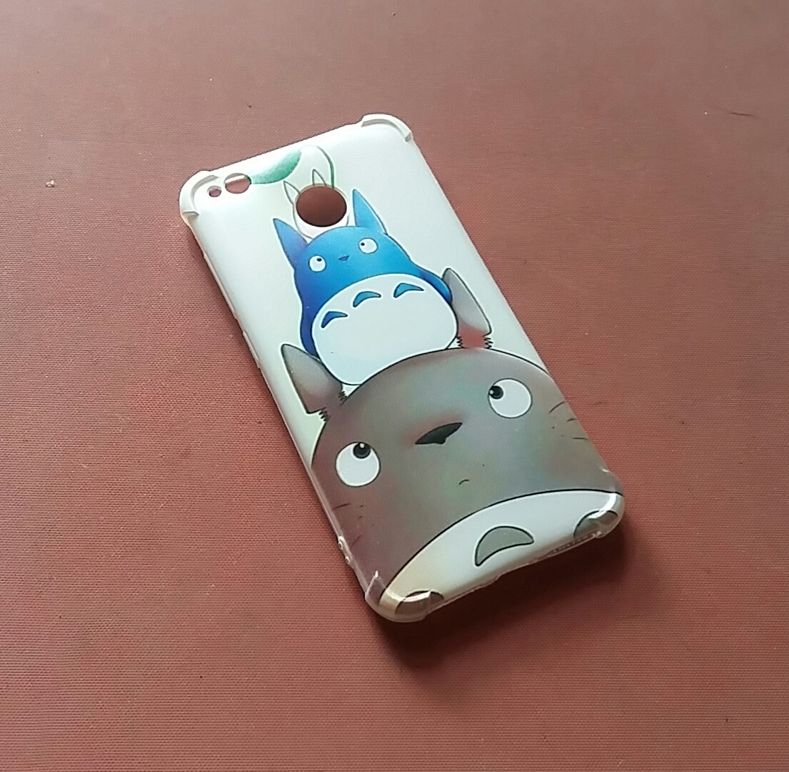 casing custom totoro