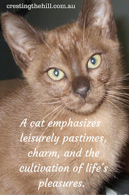 a cat emphasizes leisurely pastimes, charm, and cultivation of life's pleasures.