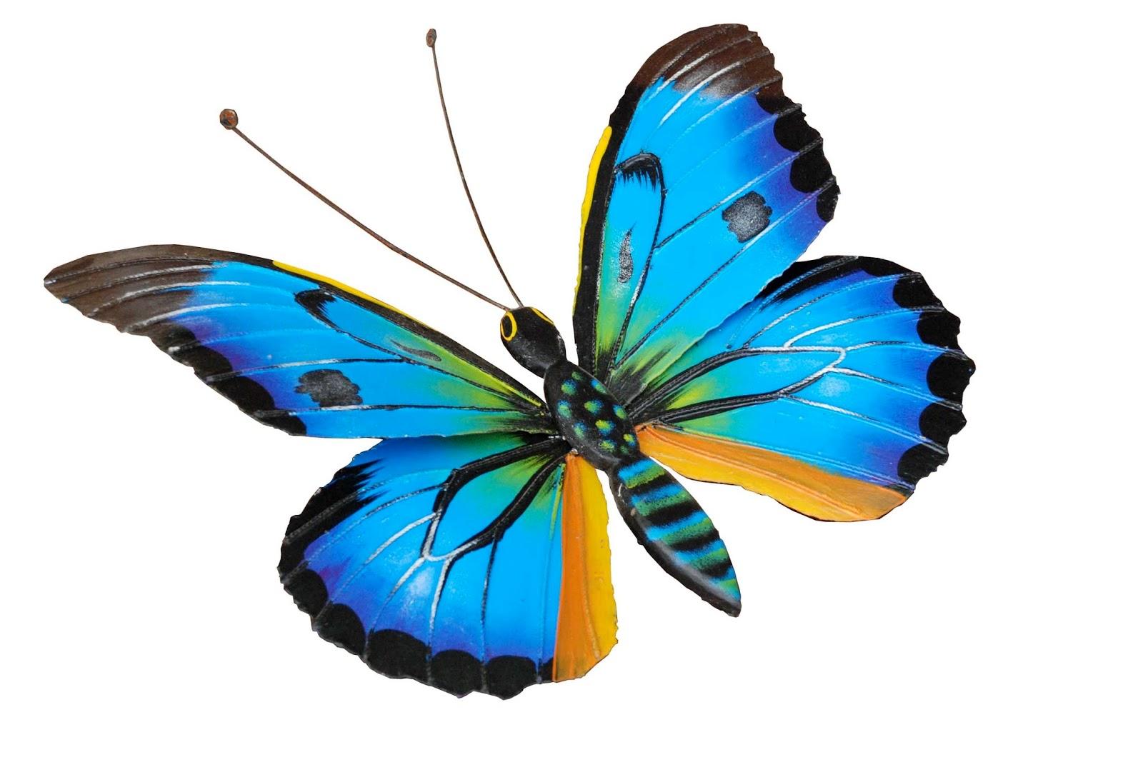 Dibujos De Mariposas Infantiles A Color: Patada De Caballo: Mariposas