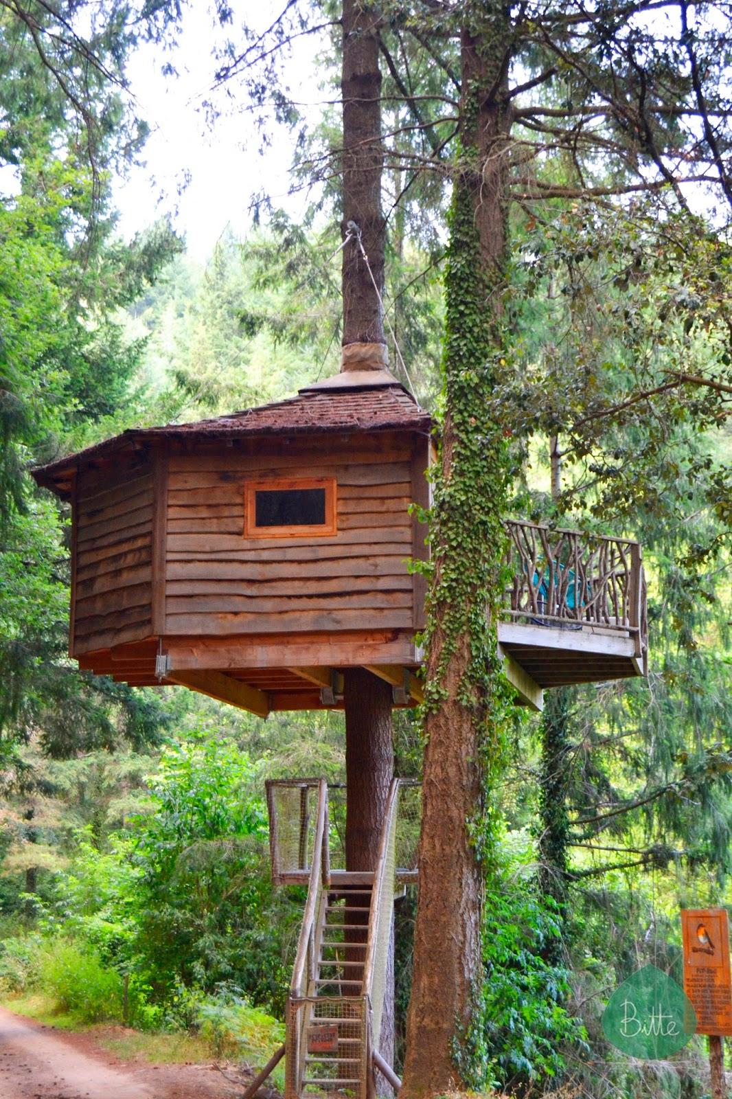 Bitte durmiendo en los rboles - Casas en los arboles sant hilari ...