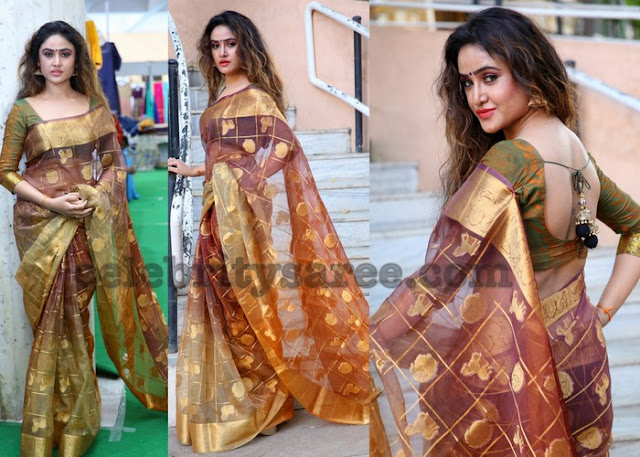 Sony Charista Tissue Silk Saree