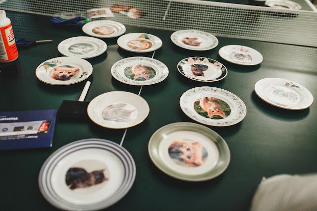 DIY Cat Plates