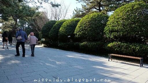 cara menuju taejongdae park busan