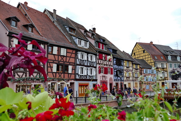 Colmar, Blumen, bunt, Häuser