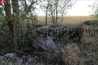 Первый найденный кайзеровский ДОТ у деревни Задворье