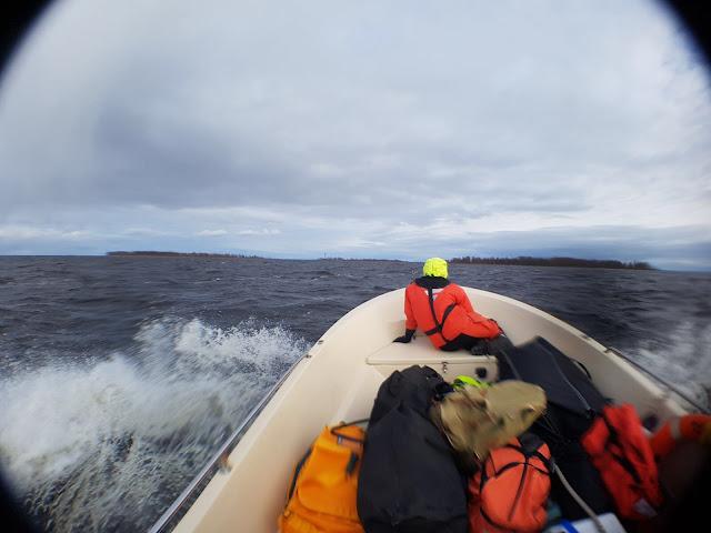 Vene suuntaa merelle, keulassa istuu pelastautumispukuun pukeutunut henkilö.