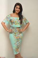 Nikki Galrani in Cute Dress Dress At Marakathamani Success Meet ~  Exclusive 005.JPG