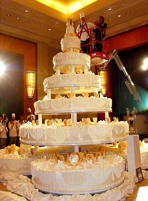 worlds largest wedding cake book of guinnes world record world s largest cake 27634