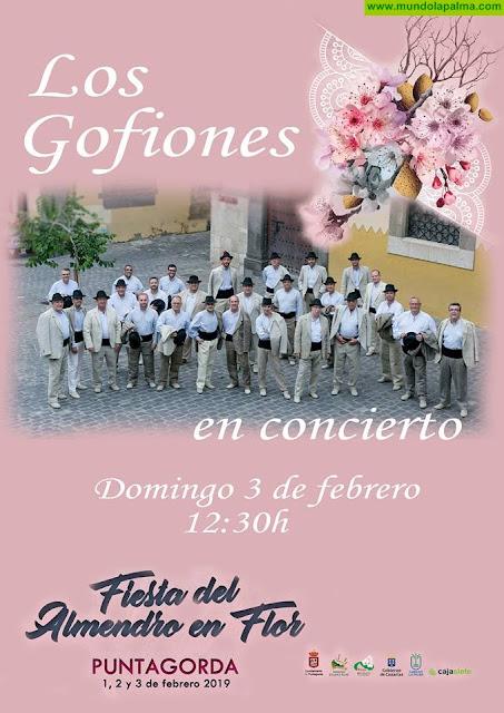 Los Gofiones en concierto en Puntagorda