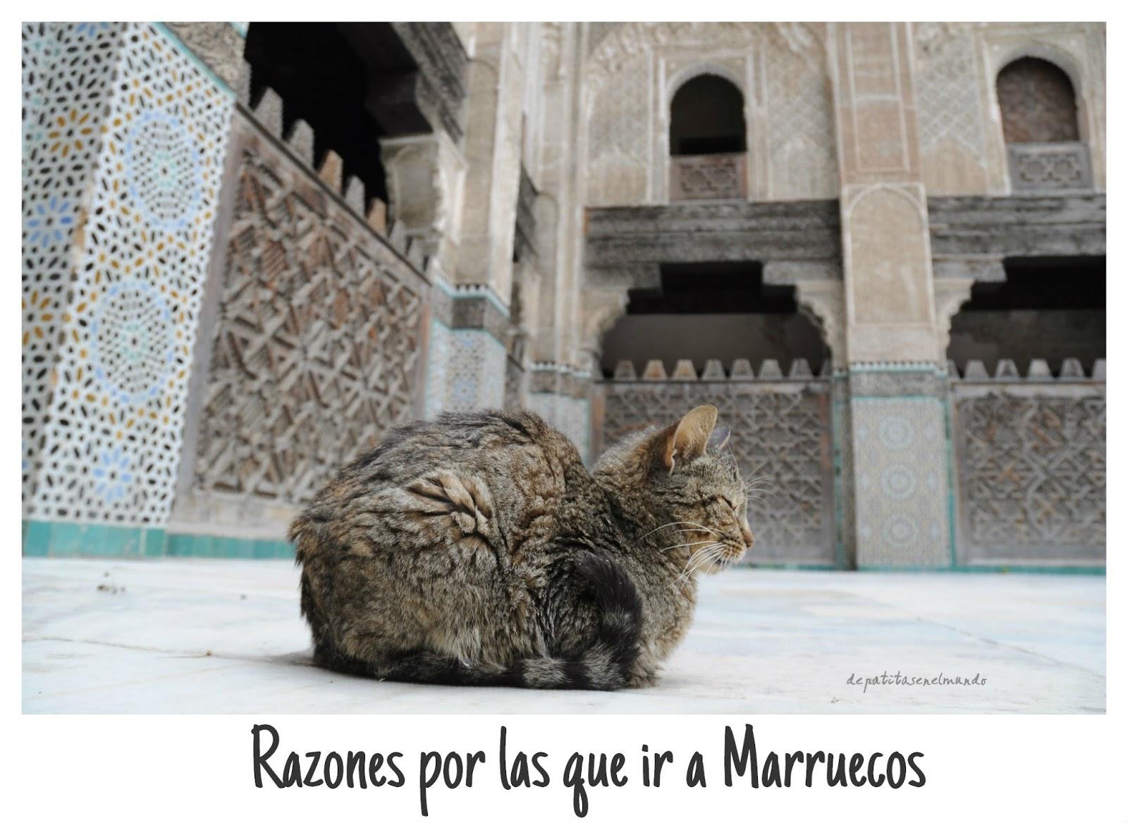 http://www.depatitasenelmundo.es/2014/04/razones-por-las-que-ir-marruecos.html