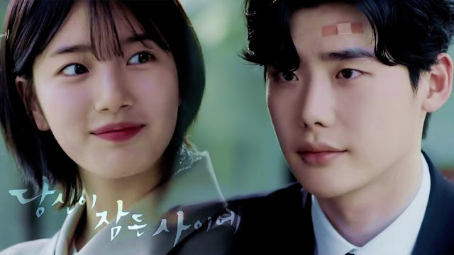 While You Were Sleeping Batch Subtitle Indonesia