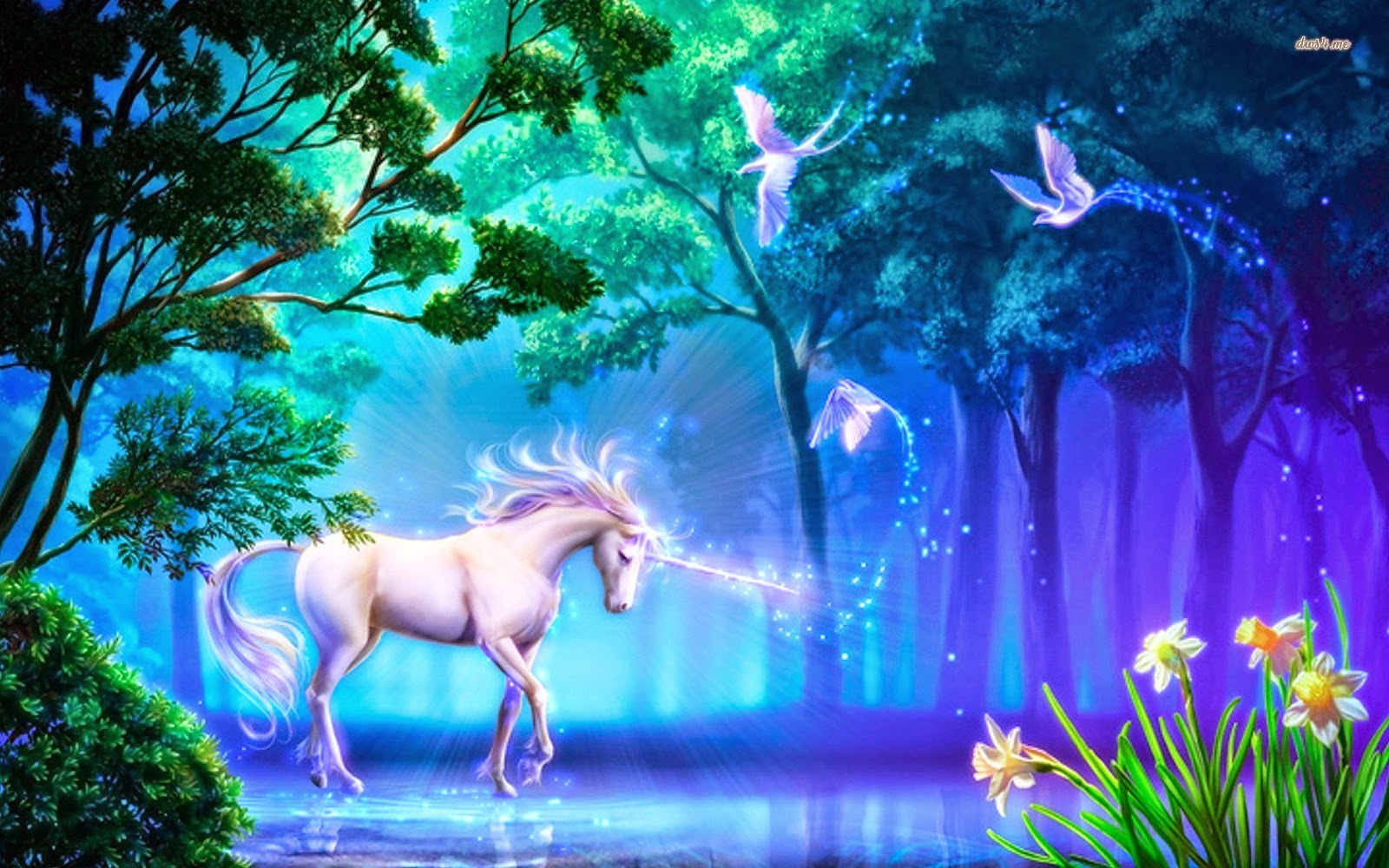 Wonderful   Wallpaper Horse Unicorn - 11634-unicorn-in-the-forest-1680x1050-fantasy-wallpaper  Perfect Image Reference_869573.jpg