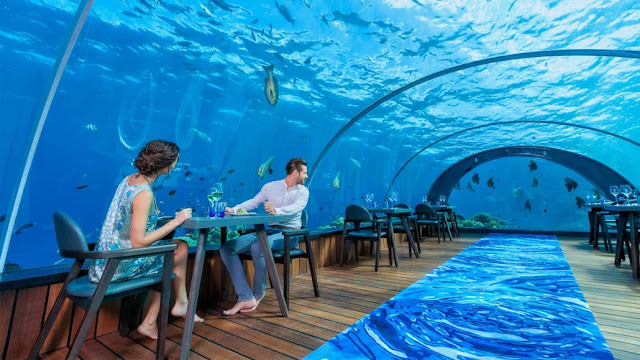 Dinner underwater