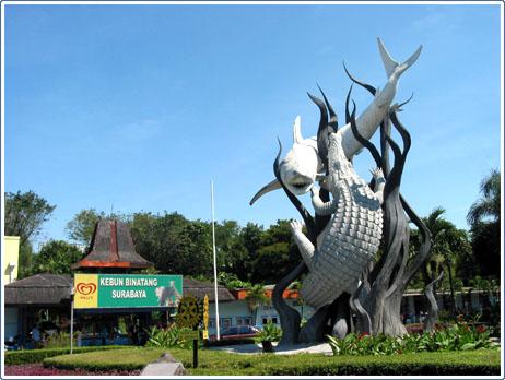 7 Keindahan Tempat Wisata di Surabaya yang Wajib Dikunjungi,Kebun Binatang
