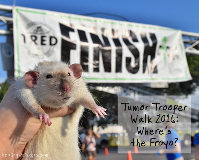 Tumor Trooper Walk 2016: Where's the Froyo?