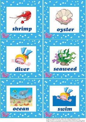 sea animals flashcards for esl teaching