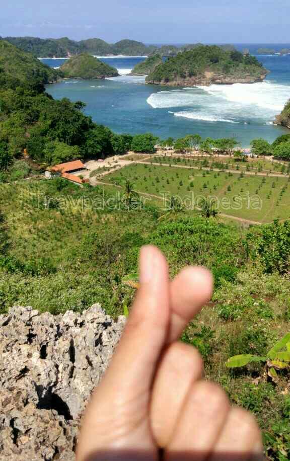 Teluk Asmara Malang : teluk, asmara, malang, Pesona, Bukit, Teluk, Asmara,
